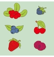 Set of berries vector image vector image