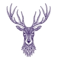 Deer head isolated on white background Hand drawn vector image vector image