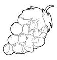 grape icon outline style vector image