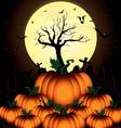 Pumpkin and Bats in big moon night on black sky of vector image