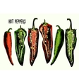Set of hot peppers vector image vector image