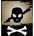 Skull on grunge background vector image