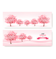 Three spring banners with pink cherry blossom vector image