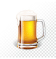with fresh lager beer in a beer mug on vector image vector image