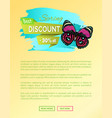best spring discount 30 off label butterfly vector image vector image