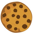 chocolte chip cookie vector image