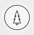 coniferous forest pine trees forest outline icon vector image