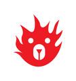 fire bear logo vector image