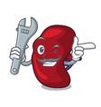 mechanic spleen mascot cartoon style vector image