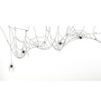 Spiders and spider web set vector image