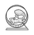 squirrel in wheel sketch vector image vector image