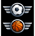 Basketball and soccer balls vector image