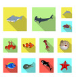 design of sea and animal sign set of sea vector image