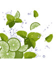 Fresh Mojito Ingredients Background vector image vector image