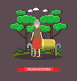 grandmother in flat style vector image