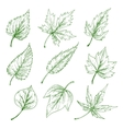 Green tree leaves sketches set vector image