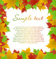 maple leaves frame vector image