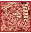 Massage School text background wordcloud concept vector image vector image