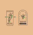 olives label with text for olive products vector image