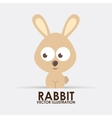 rabbit design vector image vector image