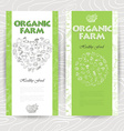 Vegetable card template Organic farm vector image vector image