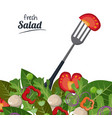 fresh salad tomato leaves fork organic food vector image