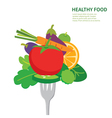 healthy food background isolated vector image vector image
