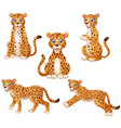 Leopard cartoon set collection