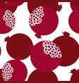 pomegranat vector image vector image