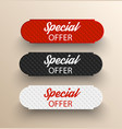 special offer banners vector image