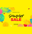 summer sale price reduce shopping palm leaf banner vector image
