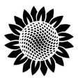 sunflower icon simple style vector image vector image