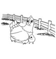 cartoon chicken coloring page vector image