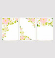 colorful pastel cosmos and green hydrangea vector image