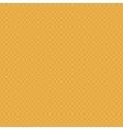 Fresh Baked Orange Waffle Seamless vector image