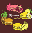 Macaroons with fruits vector image