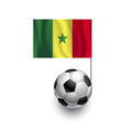 Soccer Balls or Footballs with flag of Senegal vector image vector image