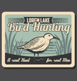 woodcock bird hunting retro vector image vector image