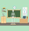anatomy classroom interior vector image vector image