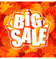 autumn lettering big sale text and fall leaves vector image