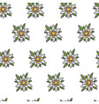 edelweiss wild flower austrian symbol seamless vector image vector image