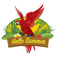 hello summer red macaw vector image vector image