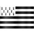 breton flag - flag brittany france vector image