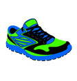 bright running shoes in vector image vector image