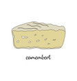 camembert on white background vector image vector image