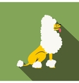 Circus poodle flat vector image