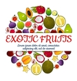 Exotic fresh fruits poster vector image vector image
