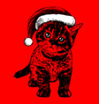 little cat kitten with christmas santa hat vector image vector image