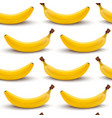 seamless stylish pattern with hand drawn bananas vector image