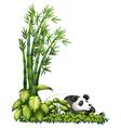 A sleeping panda vector image vector image